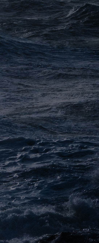 waves-v.png