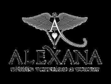 Alexanal_logo_Black-Transp.png