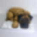 Border Terrier Cake