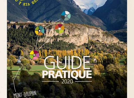 Guide pratique 2020