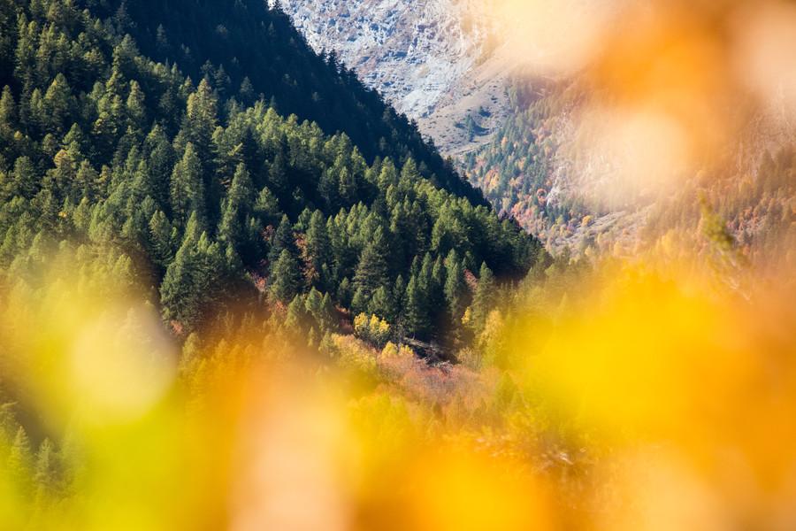 Sélection_paysages-3.jpg