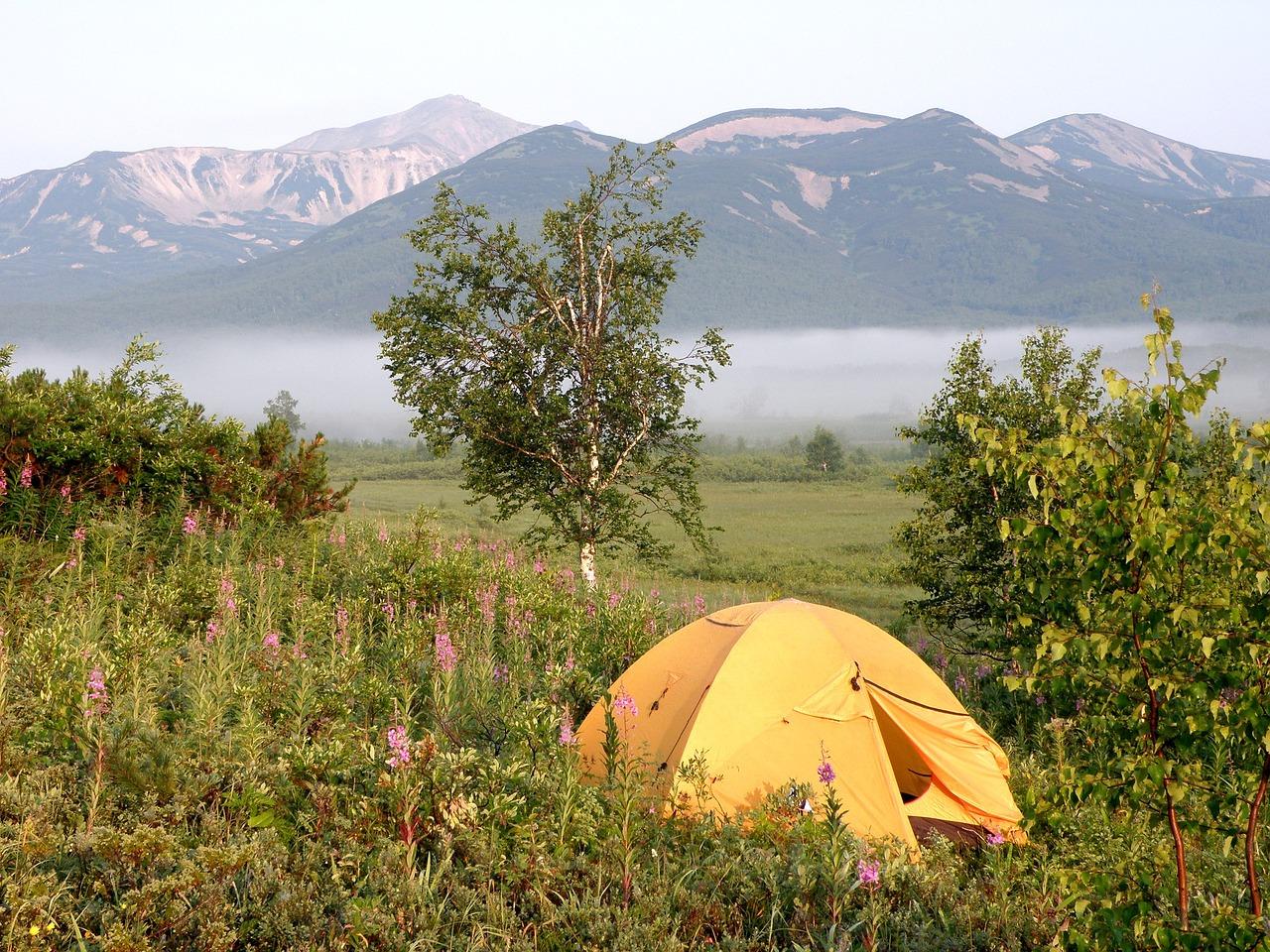 Tent Peg Pulls