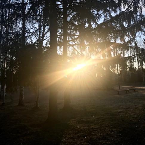 Joka aamu alku uusi.