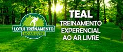 TEAL - TREINAMENTO EXPERENCIAL AO AR LIV