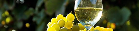 Carta de vinos blancos