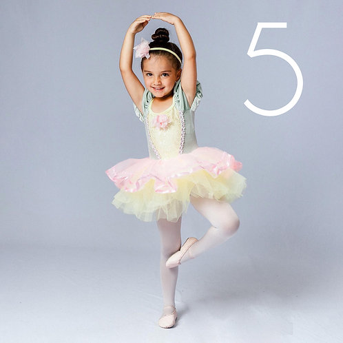 FIVE Photo Sessions - Dance/Aerial Class