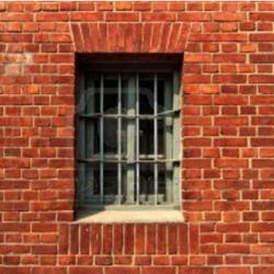 Record prison sentences