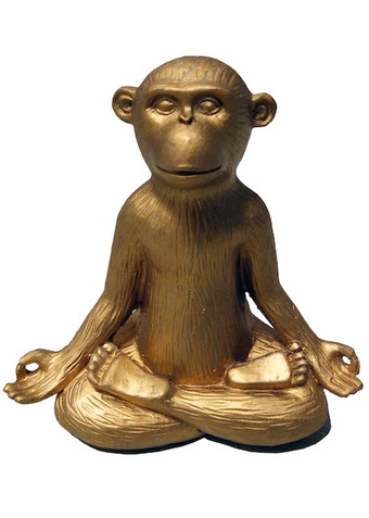 yogaaffe.jpeg