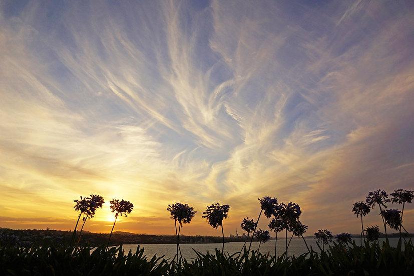 Sunset and cloud swirls