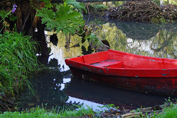 The Little Red Rowing Boat