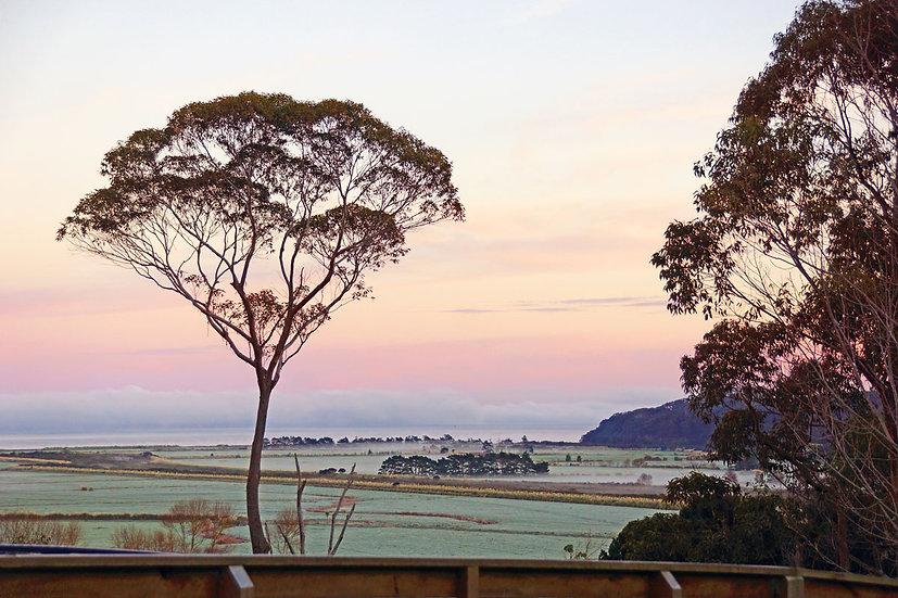 Kaipara Coast sunrise