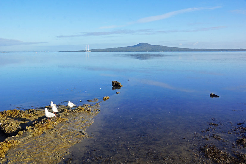 Rangitoto on a gorgeous morning