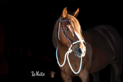 White with weaver headstall