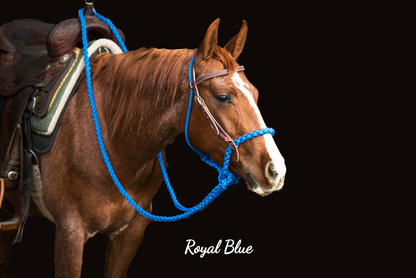 Royal Blue with Weaver headstall