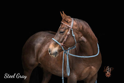 Steel Gray with Weaver headstall