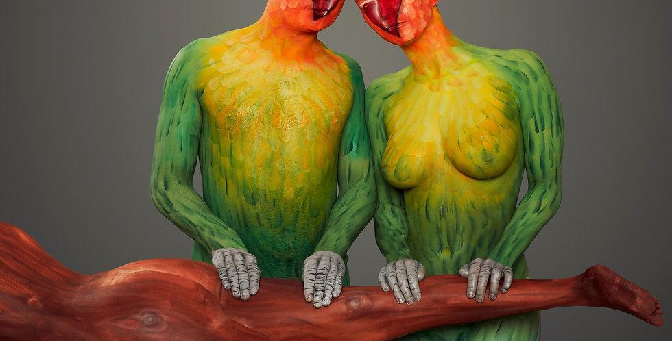'Intimacy' Lovebirds