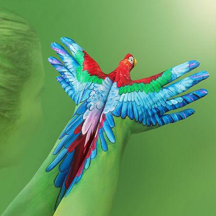 Macaw.jpeg