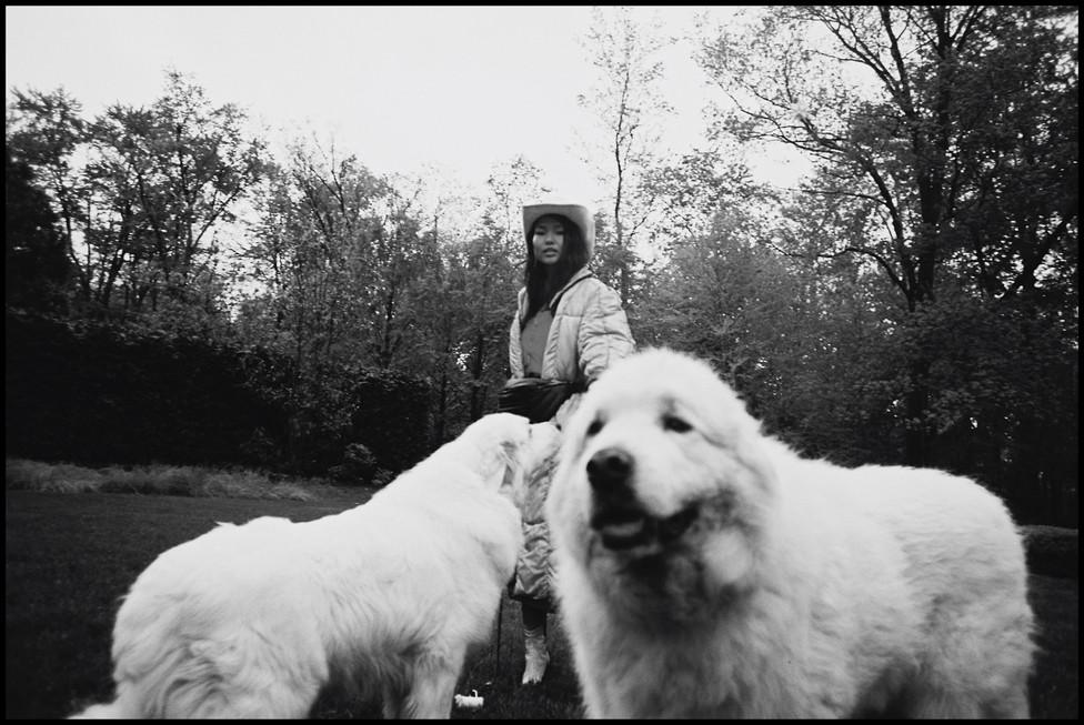 rachel-dogs01.jpg