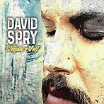 David Spry Wilfully Adrift