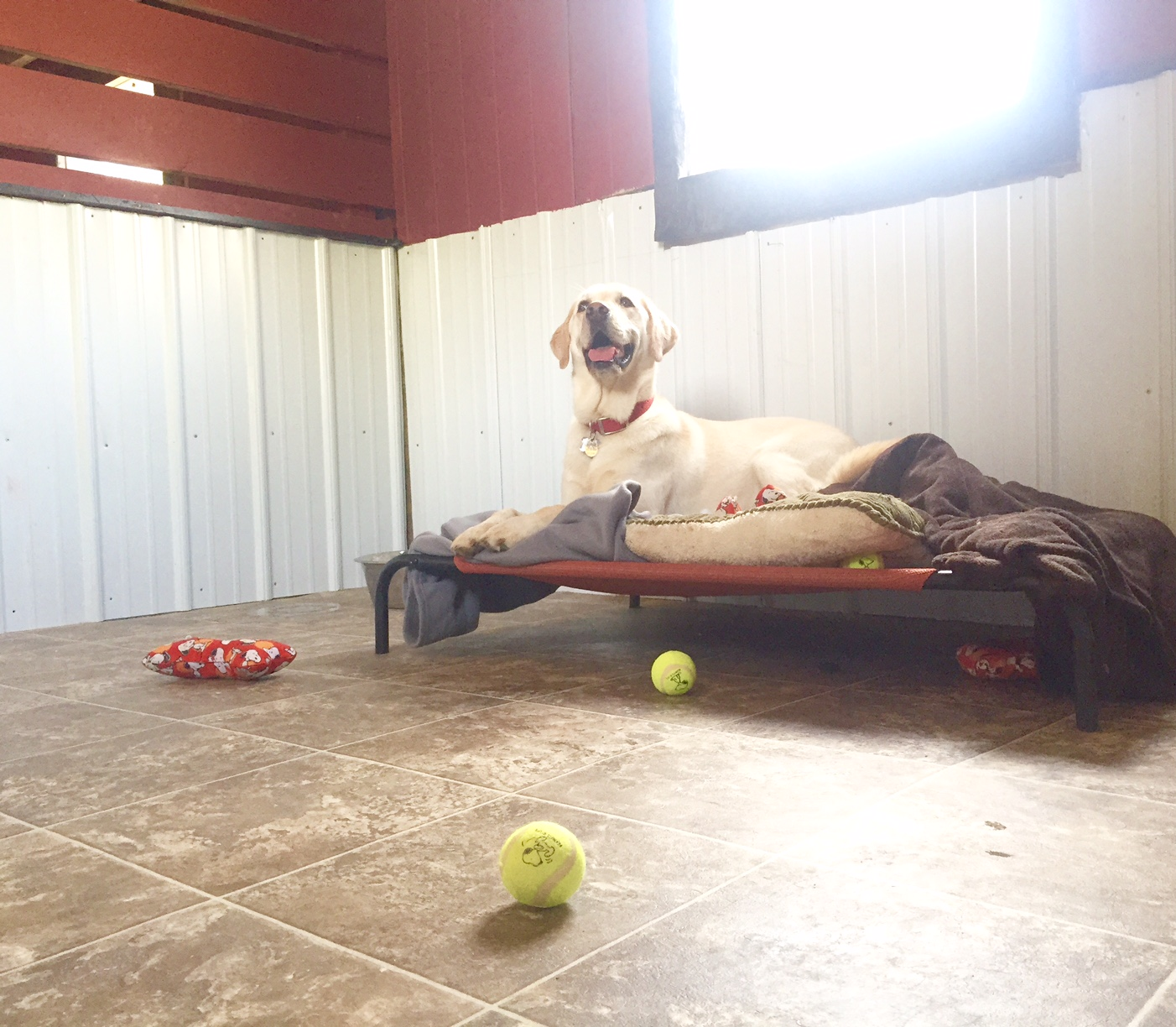 Maggie Modeling the Buddy Rooms!