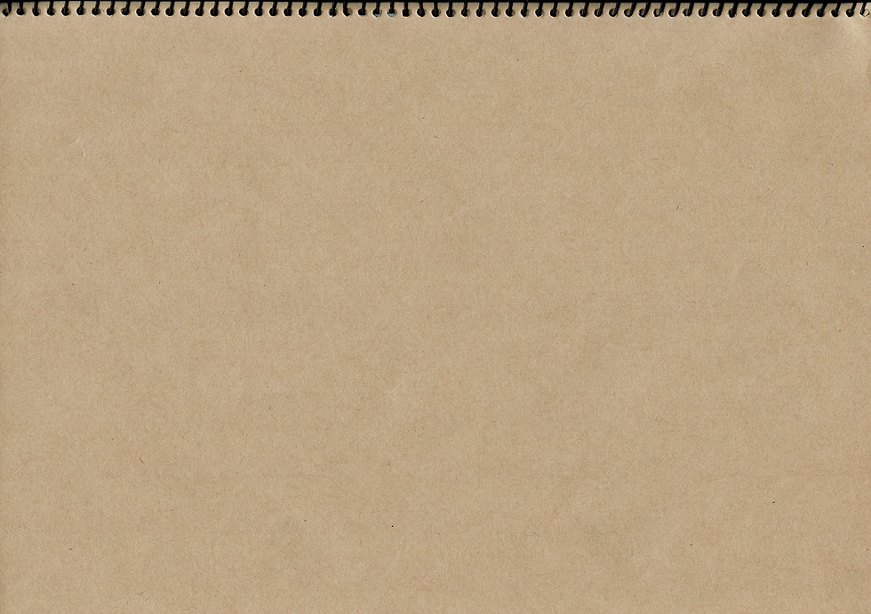 light brown notebook jpg.jpg
