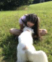 Wir lieben Haustiere
