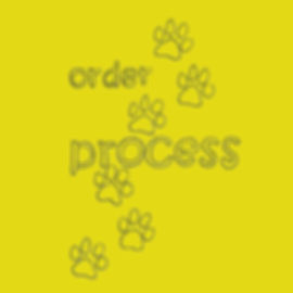 Order Process916gq.jpg