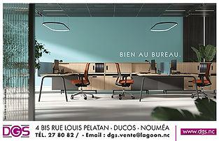 PUB-DGS.jpg