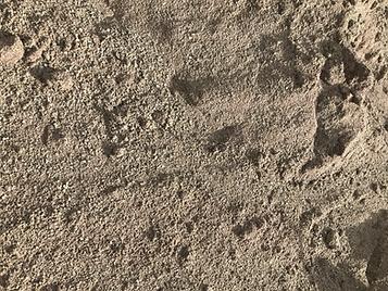 sand.HEIC