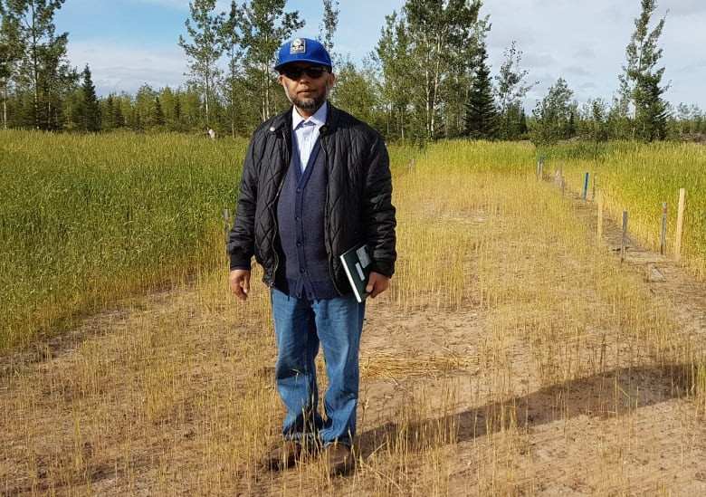 Joinal Abiden stands in a section of a wheat field in central Labrador, where he used a combination of biochar and standard fertilizers. (Jonny Hodder/CBC)
