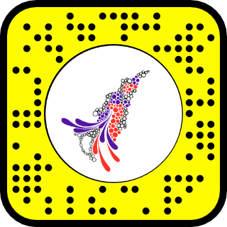 snapcode - abstract face.png