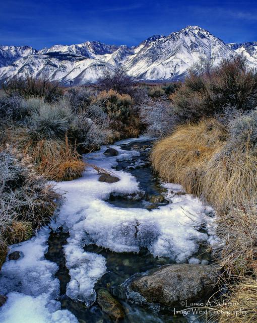 Sierra Nevada Winter Creek, Owens Valley