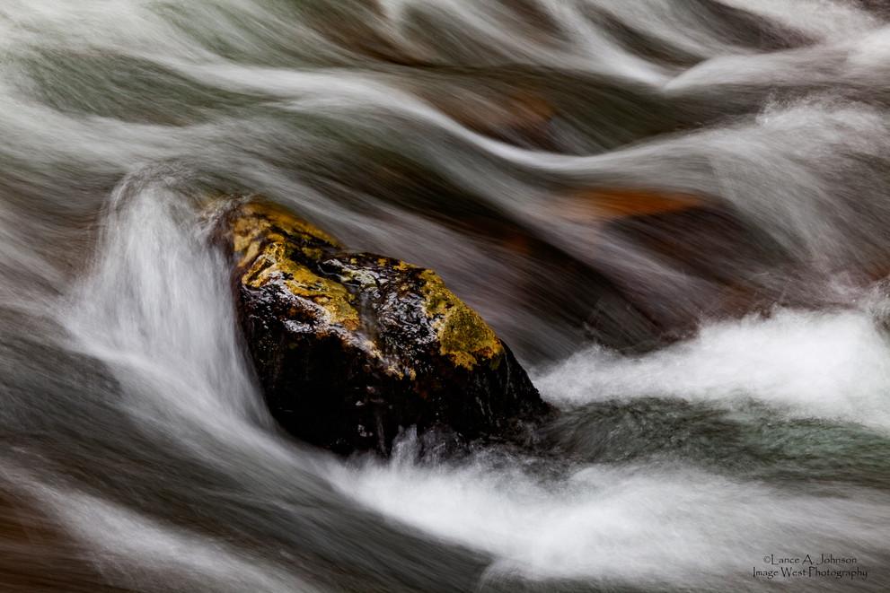 Abstract in Union Creek, WA.jpg