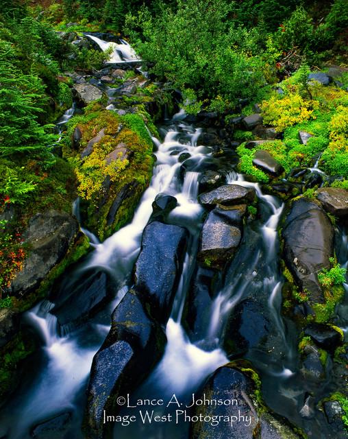 Paradise River, Rainier National Park, W