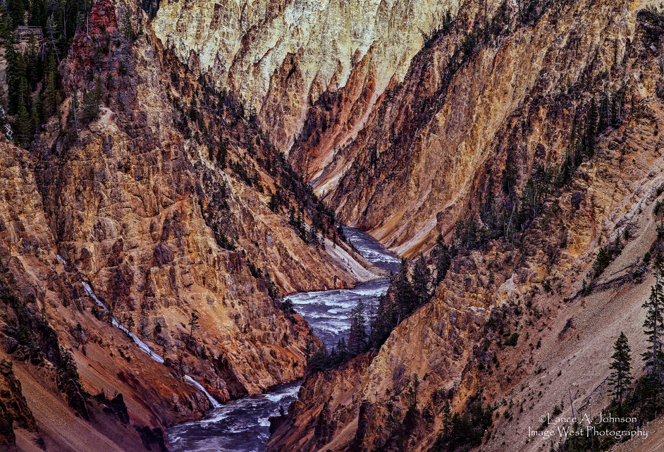 The Grand Canyon at Yellowstone National