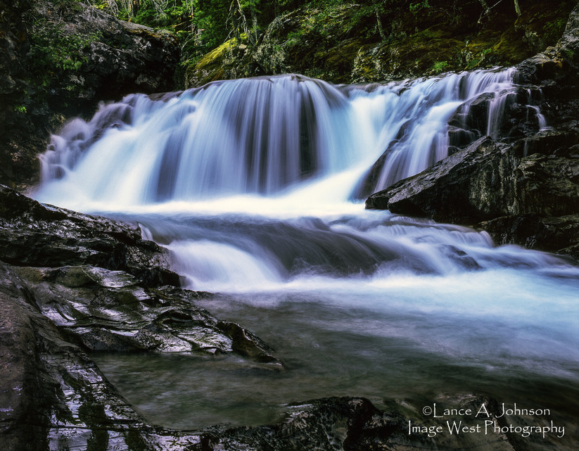 Ohanapecosh River, Mt Rainier National P