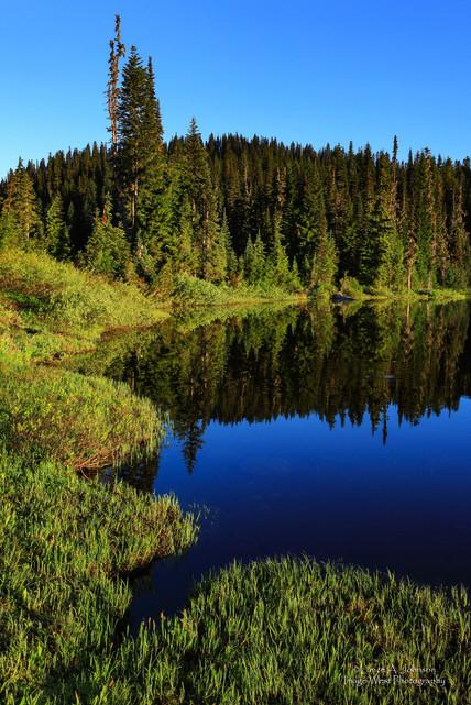 Reflection Lake, Mt Rainier National Par