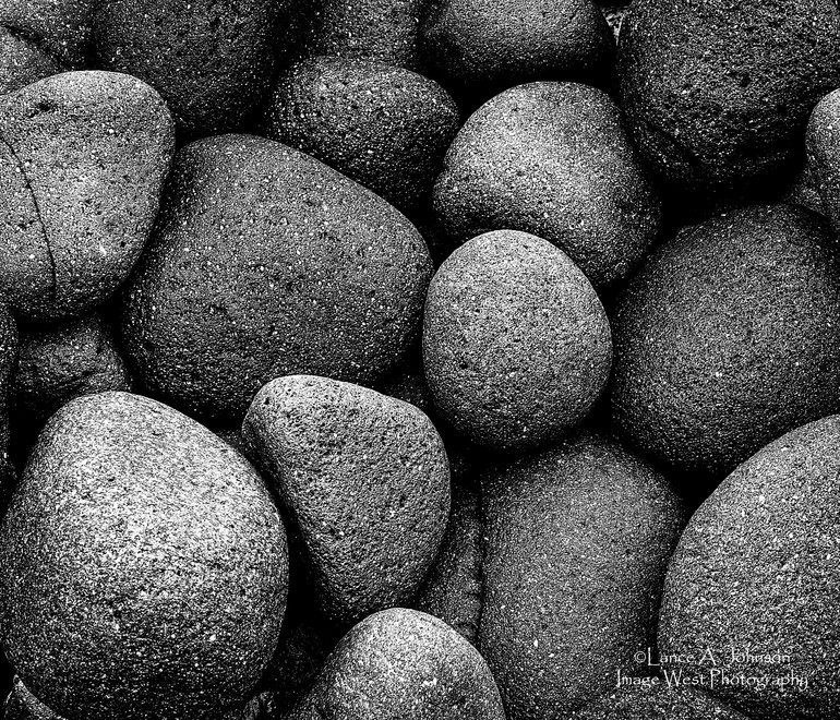 Rock Variety Along The Nisqually River t
