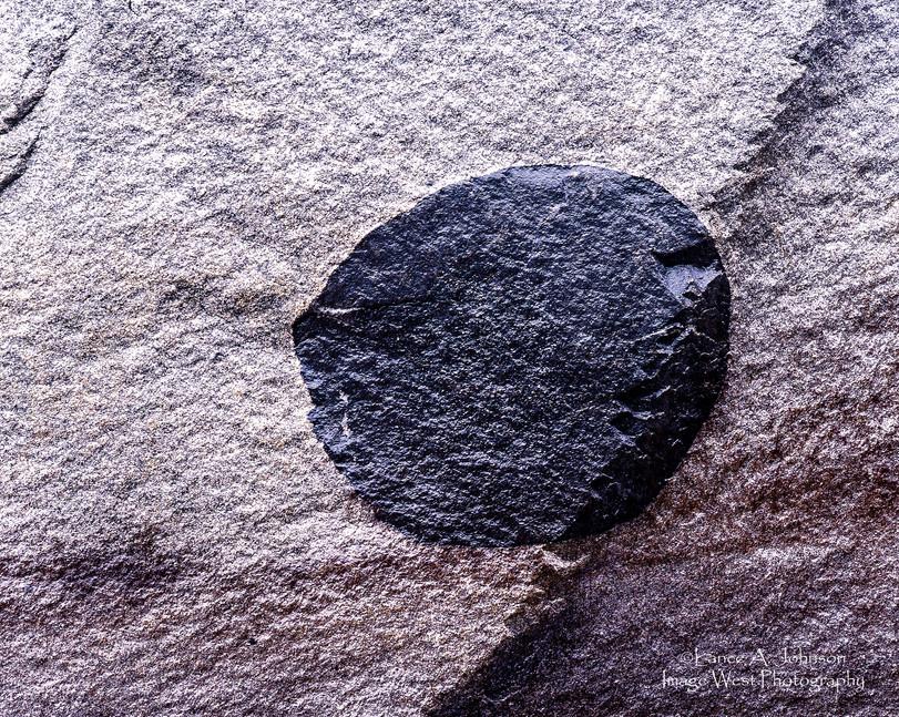 Xenolith inclusion granodiorite at Yosem