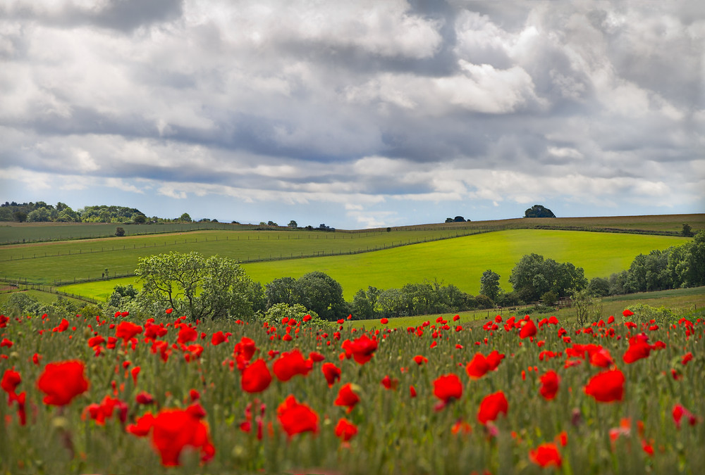 Cotswolds Guided Tours | Cotswolds Day Trip