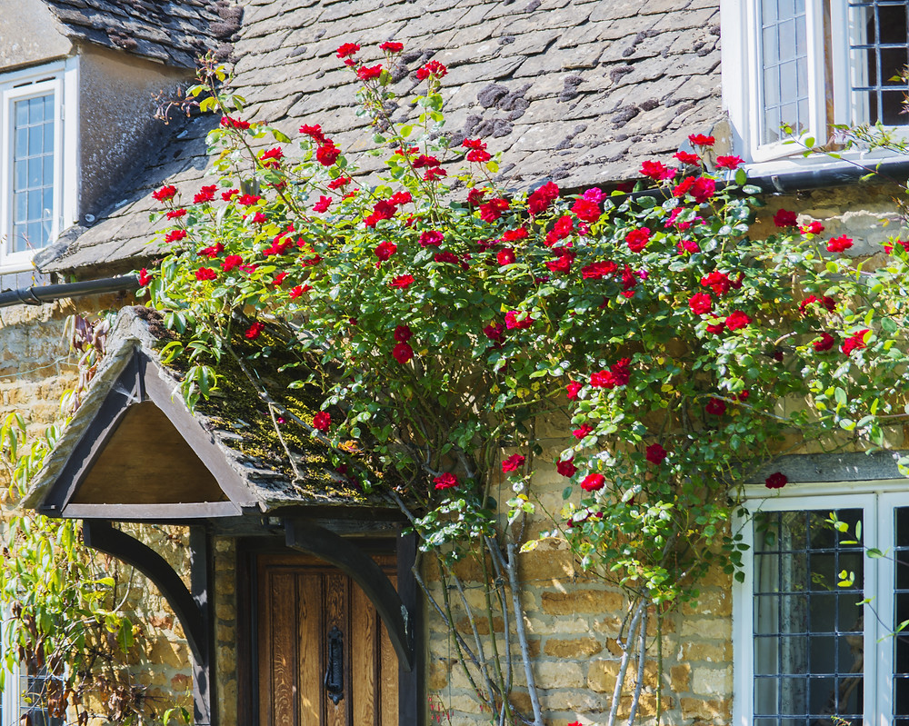 Cotswolds Mystery Tour | Cotswolds Guided Tours | Secret Cottage
