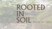 Rooted in Soil