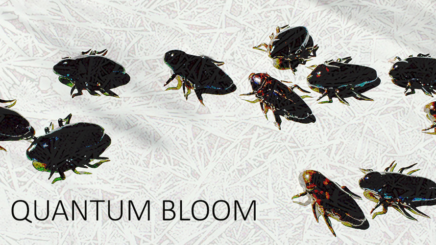Quantum Bloom @ PRACTICE Gallery