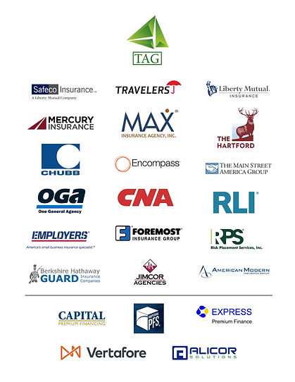 TAG Partner Companies 2020.jpg