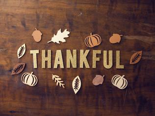 Happy Thanksgiving 🍂
