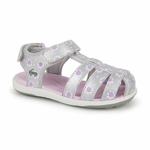 Paley Silver Purple