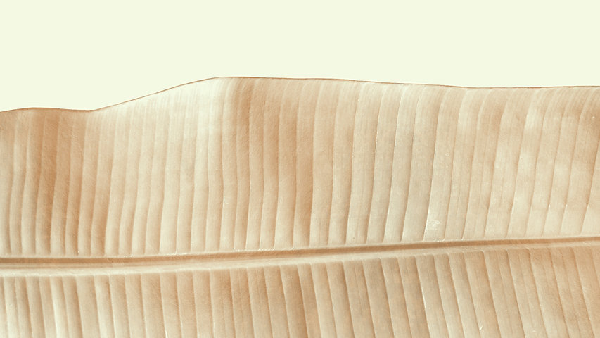 Feuille d'or