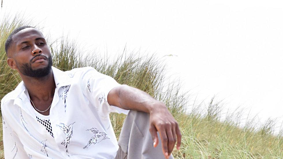 Jun2020_DoctorBird_Beach_colour2blur.jpg