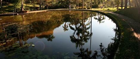 Jardim_Botnico_Foto_Caio_Pimenta_trat_jpg_2.jpg