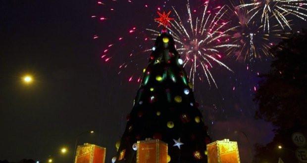 Arvore Natal Ibirapuera